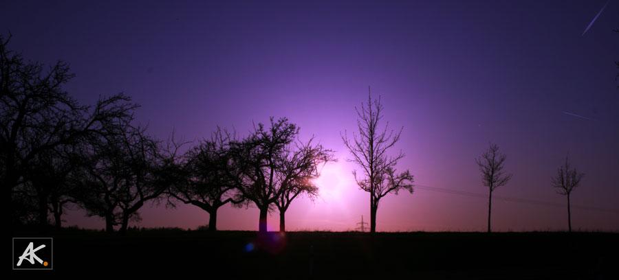 panorama nightpurple